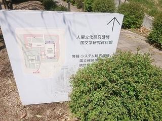 kyokuchi_1.jpg