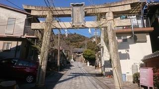 Sacoshi_2.jpg