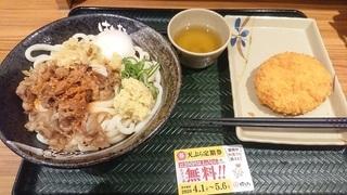hanamaru_udon2.jpg
