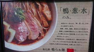 kamo_3.jpg