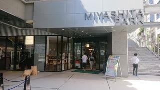 miyashita_2.jpg