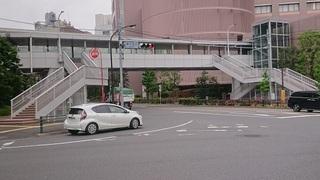sui_2.jpg